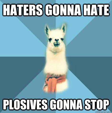 Ha! The Linguist Llama is cracking me up