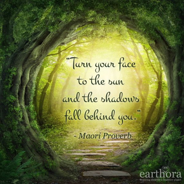 Turn Your Face to the Sun, and the Shadows Fall Behind You - Maori Proverb
