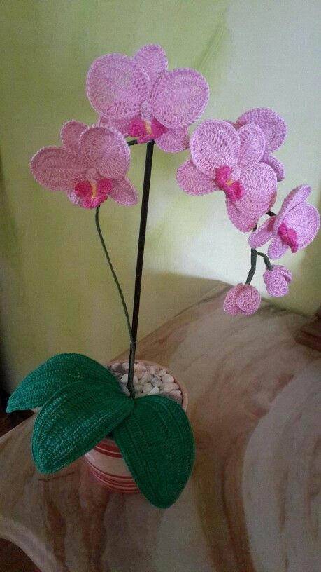 Flower Orchid Crochet