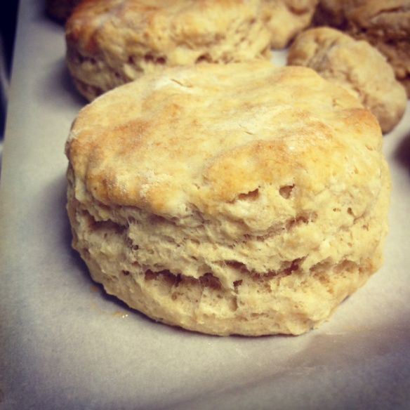 whole wheat biscuits finished closeup | food | Pinterest