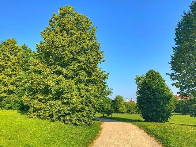 In da #hood.  . . . #minga #mingaoida #münchen #munich #muc #munichcity #089 #muenchen #deutschland #germany #igersmuc #igersmunich #instamunich #ig_munich #ig_europe #visitmunich #visit_munich #europe #bavaria #visitbavaria #travel #travelgram #instatravel #travelblogger #travelpics #travelawesome #bigcitylife #parklife