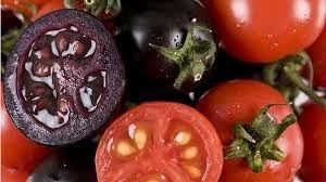 El valor económico de alimentos modificados genéticamente para agricultores es el mayor beneficio, incluyendo países en desarrollo.606162 Un estudio en el 2010, demostró que el maíz Bt proporciona beneficios económicos de 6.9 mil millones de dólares mayor al de los 14 años anteriores en cinco estados del medio oeste.6364 Economistas agrícolas calcularon que el superávit mundial aumentó en $240.3 millones para 1996. De este total, la parte más grande (59%) fue a los agricultores…