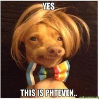 Phteven / Tuna the Dog