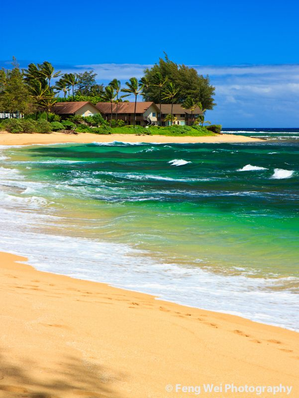 Tropical paradise, Wainiha Beach, Kauai, Hawaii  www.SailtheSeasTravel.com facebook/Sail-the-Seas-Travel.com 888-283-4726