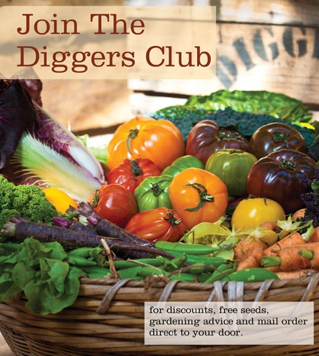 Diggers Club: Plants,Vegetable and Flower Seeds Online,Gardening and Growing Vegetables in Australia - The Diggers Club