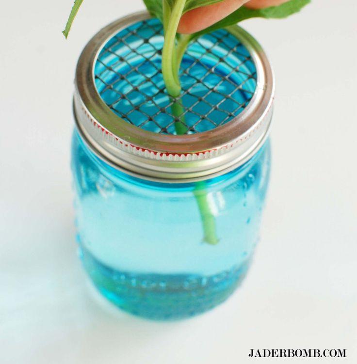Make a mason jar - screen plant holder. #masonjarcrafts