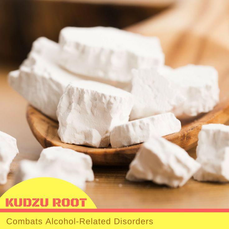 Kudzu root extract has isoflavones which are used to treat alcohol-related disorders. This plant is beneficial to alcoholism because it is purported to suppress alcohol cravings and lower alcohol consumption. Furthermore, it can help reduce the effects of alcohol hangovers, such as headaches, dizziness, upset stomach and vomiting.  #USimplySeason #spices #KudzuRoot  Source: Live Strong