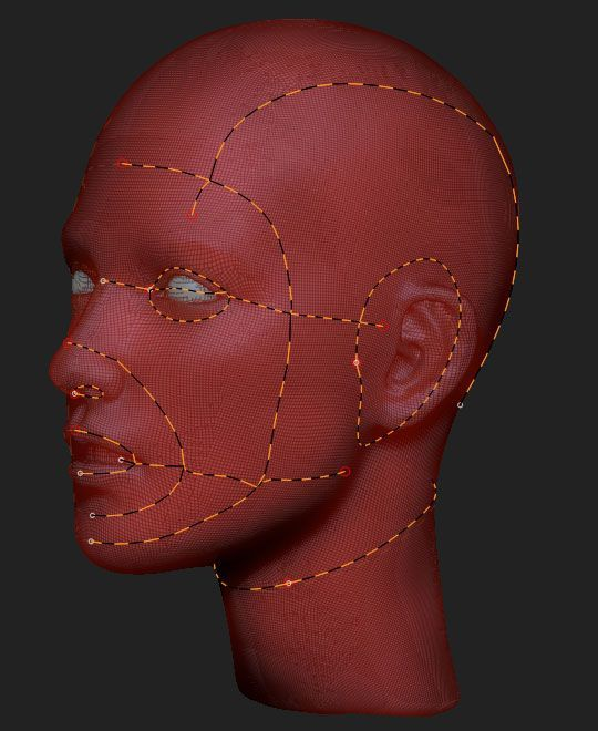 Polygon flow reference. face zremesher polypaint - Google 검색
