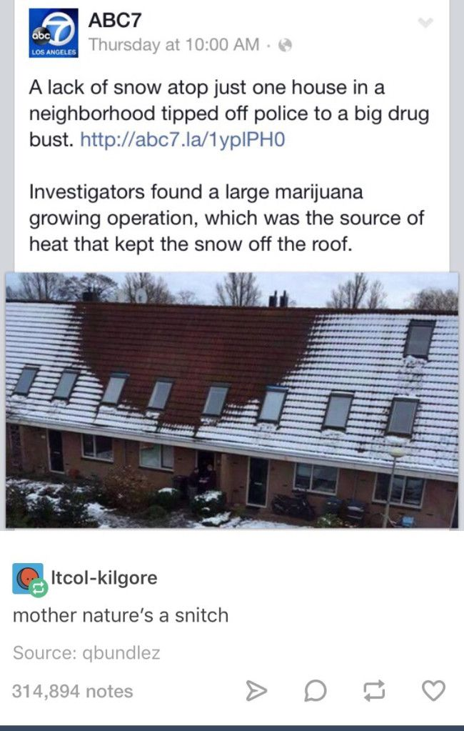 mother natures a snitch
