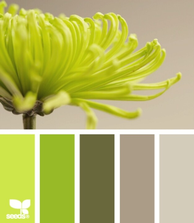 Again the subtle, green, monochromatic colour scheme that is all around us.