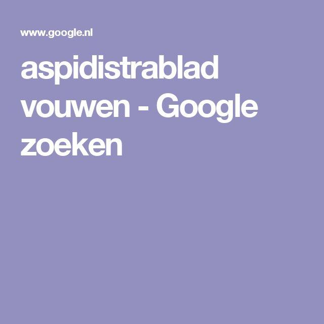 aspidistrablad vouwen - Google zoeken