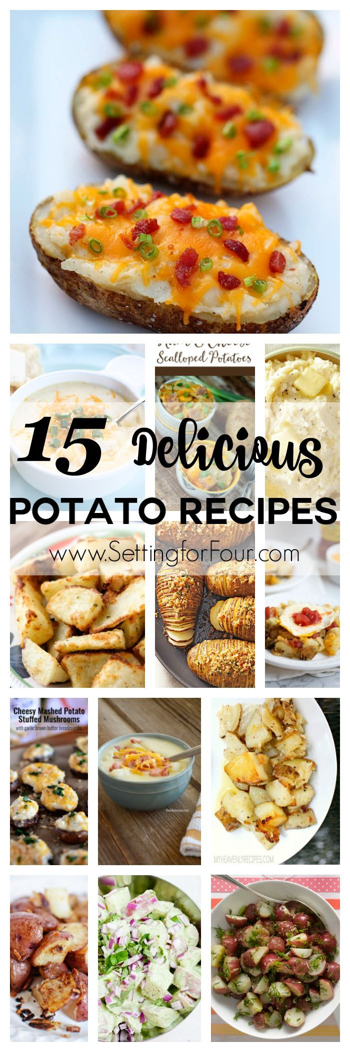 15 Delicious Potato Recipes you have to try! Includes recipes for potato casseroles, soups, baked, fried, mashed and more!