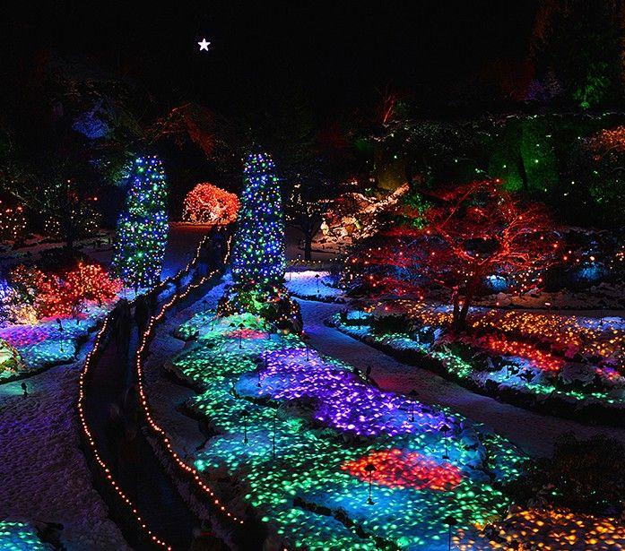 496105d65420d6c2595b9f6412fbf0f1 - The Butchart Gardens Christmas Lights Tour