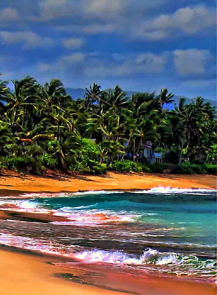 Hawaii is one of the world's most popular tourist destinations and is a real island paradise.