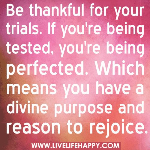 Thankful Of Life Quotes: 17 Best Being Thankful Quotes On Pinterest