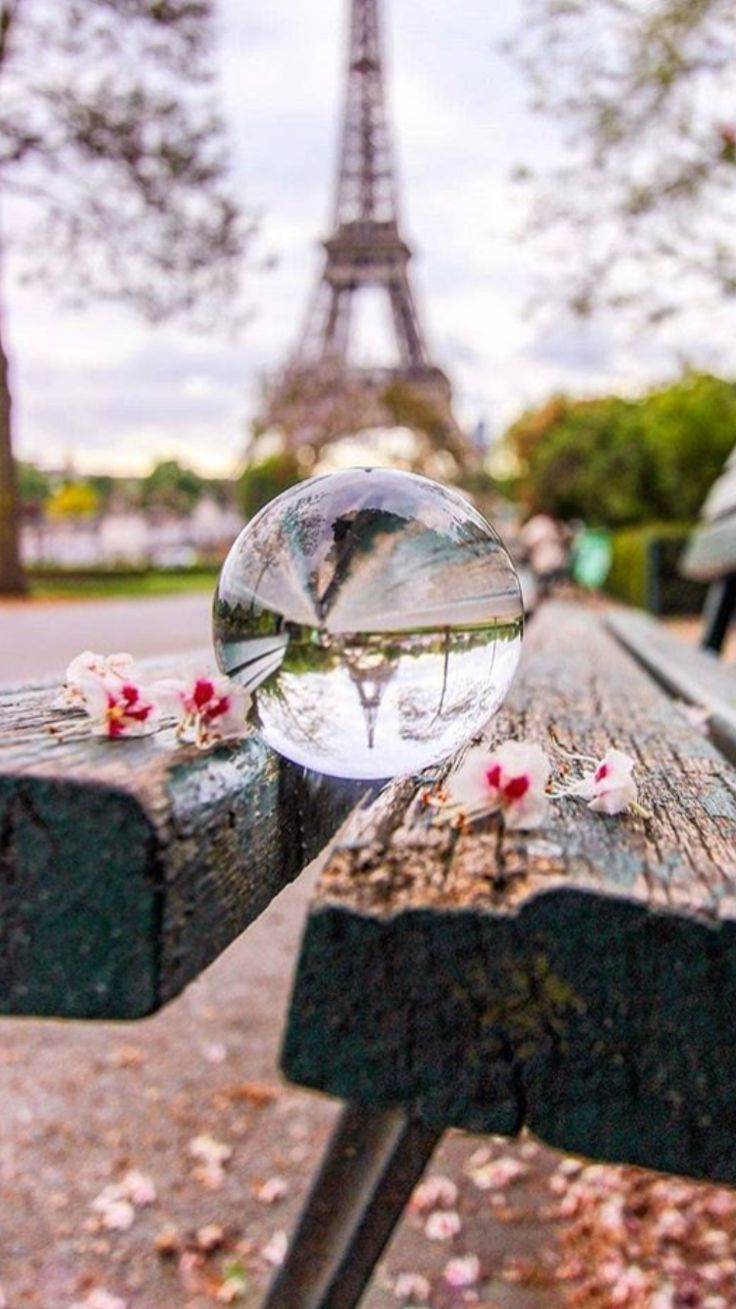 #paris #eiffeltower #beauty #flowers #sunny – #bea…