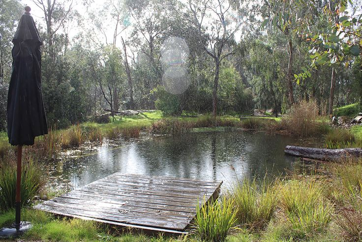 Our Projects | Natural Swimming Pools Australia