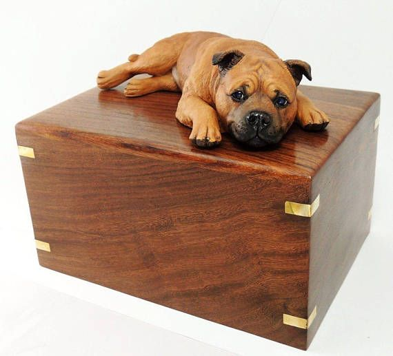 Our Rosewood Urn Features A Staffy In Lying Pose Solid Wood Smooth