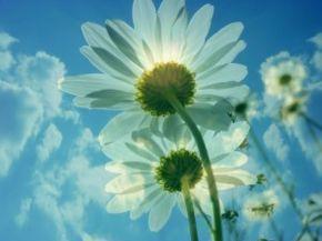 7 tipů, jak přilákat do svého života hojnost