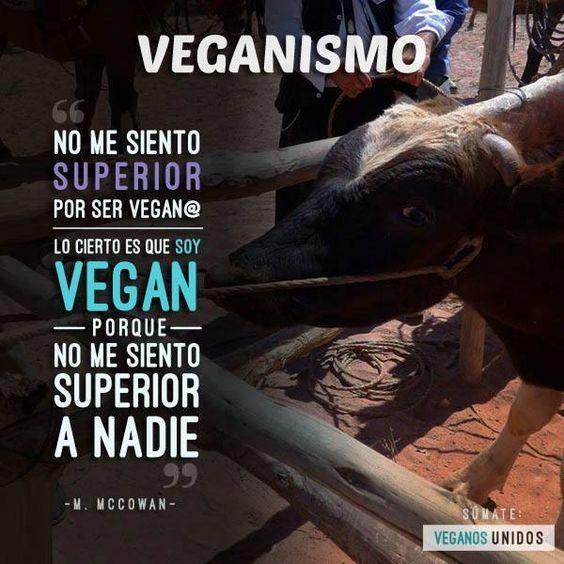 ¡Vuélvete vegano/a! - Go vegan!  #vegan #vegano #veganism #veganismo: