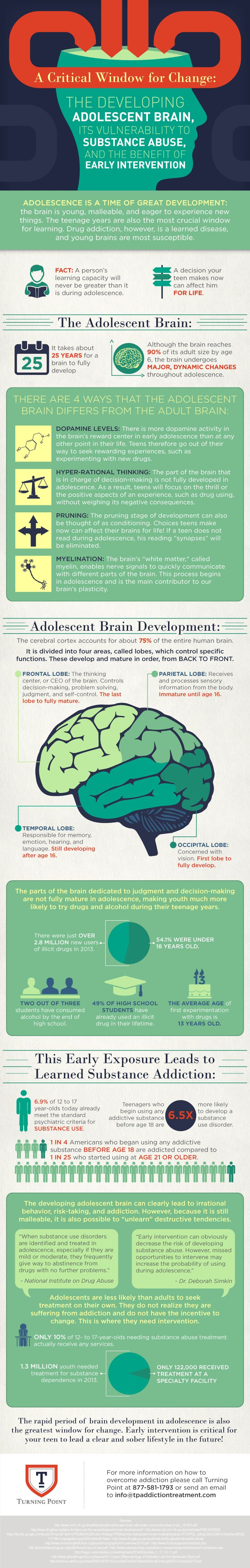 The adolescent brrain? Well lets just say it's different. Find out how in this infographic.