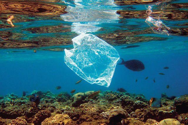 Πιερία: Τα πλαστικά σαρώνουν τις ελληνικές θάλασσες