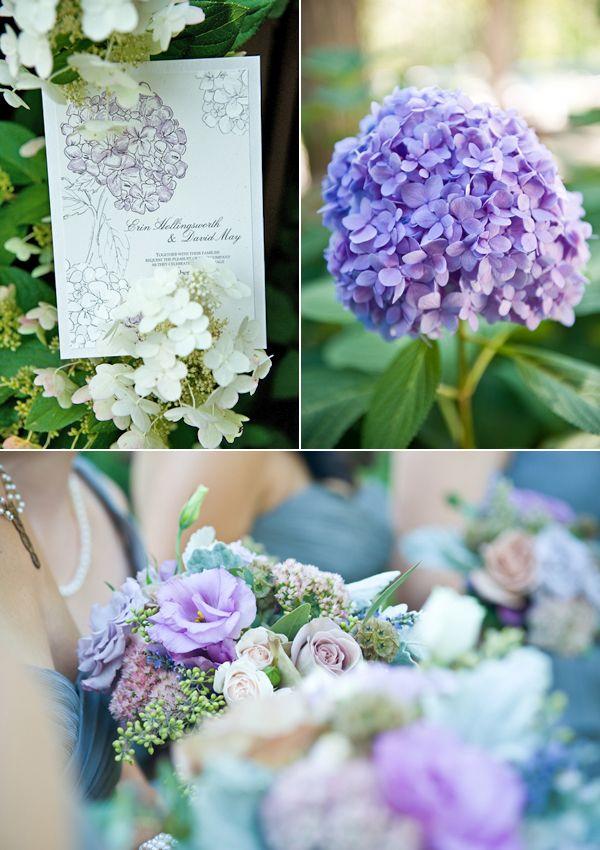 <3 hydrangeas: Purple Combinations, Soft Purple, Wonder Purple, Purple Floral, Purple Passionate