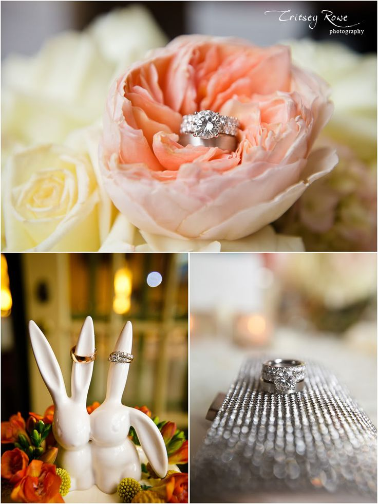 1000 Images About Wedding Ring Shots On Pinterest