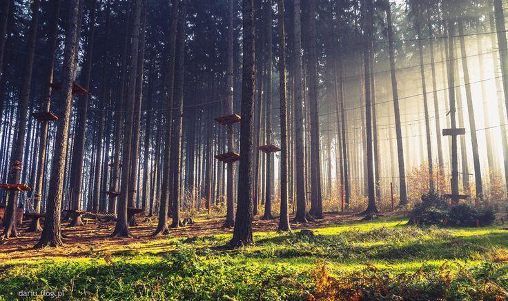 Park Linowy w Kudowie-Zdrój, http://www.mountain.com.pl/ fot.Dariusz Lesiczka