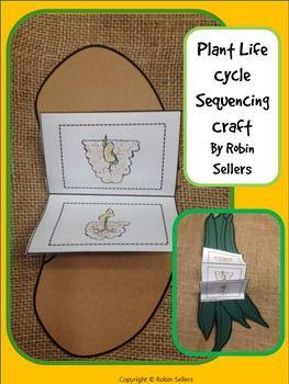 Plant Life Cycle*