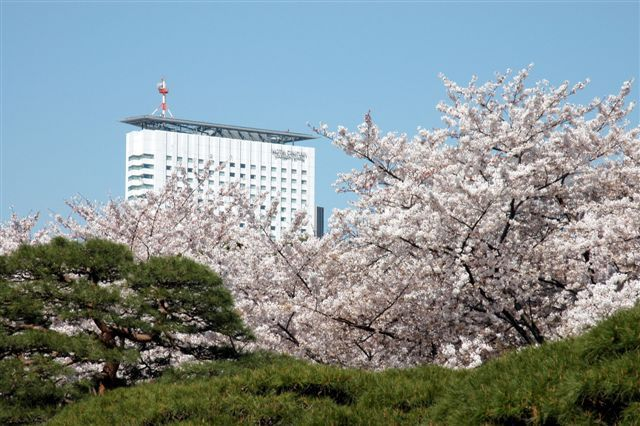 The best luxury hotel to splurge on in Tokyo