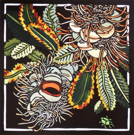 Kit Hiller - Banksia - hand colored linocut