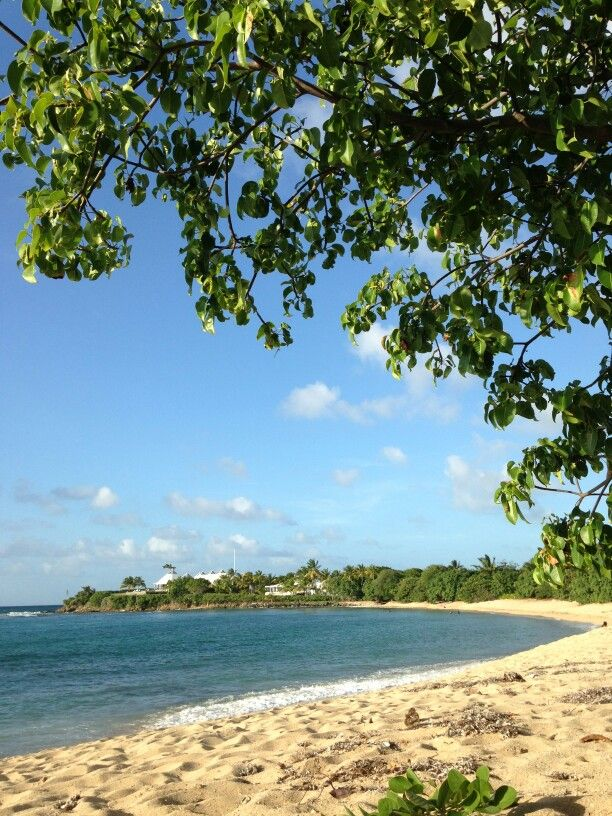 210 Best Images About St Croix Our Home Away From Home