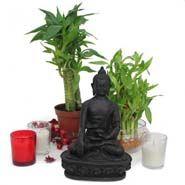 Lucky Buddha gift