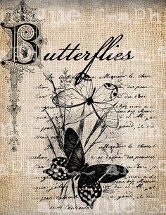 mariposa mas clave de sol watercolor - Buscar con Google