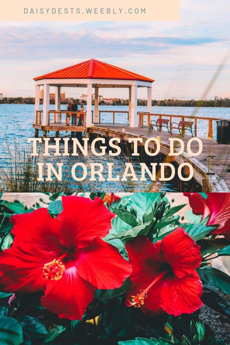 Orlando Activities Other Than Theme Parks For Your Next Vacation Orlando Activities Orlando Orlando Florida Vacation