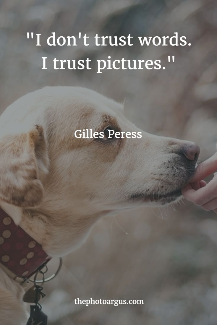 """I don't trust words. I trust pictures.""-- Gilles Peress"
