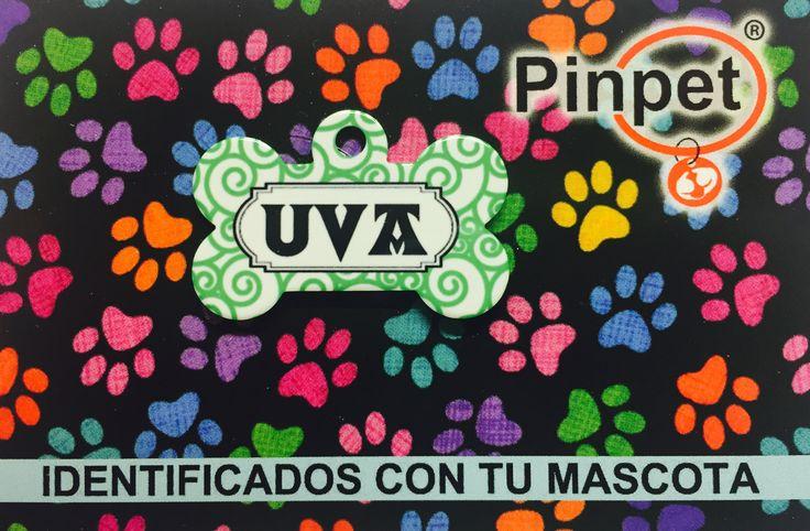 Placas Fashion para mascotas de Pinpet.