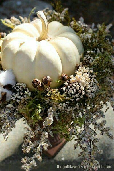 Bildergebnis für white pumpkin autumn mood