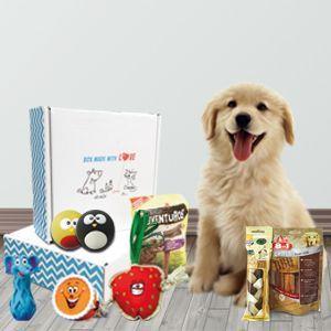 la-meilleure-des-box-pour-chien