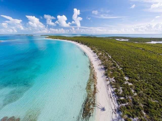 Islas Privadas de Ensueño Un santuario salvaje en el #Caribe para los amantes de la #naturaleza. #amantesdelanaturaleza #colorido #mar http://bit.ly/290lPfS