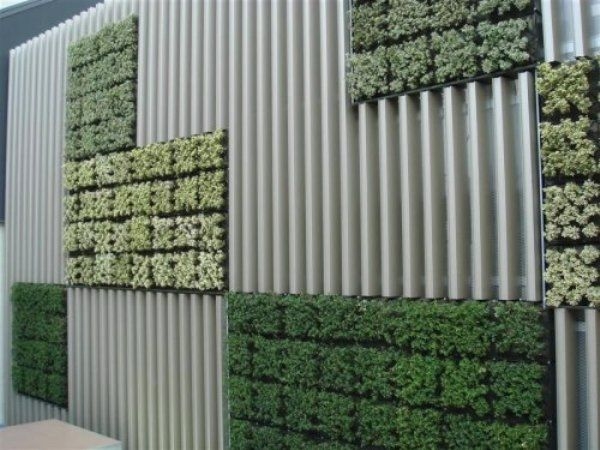 planted wall. Maybe do this to make container buildings semi-attractive.