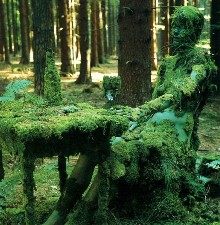 76 best Haunted Woods/Swamps/Places images on Pinterest ...