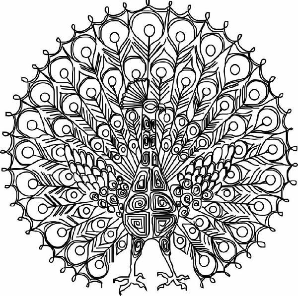 intricate coloring pages for adults crazy hard coloring pages 600x597px diy pinterest