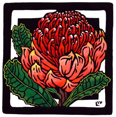 A lovely drawing of a Waratah - the official state flower of New South Wales, Australia, where I live. These are large, waxy flowers on thick woody stems. Beautiful.