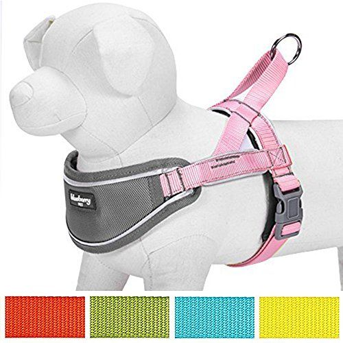 """Blueberry Pet 5 Colors Soft & Comfy 3M Reflective Strips Padded Dog Harness Vest Chest Girth 17"""" - 19.5"""" Pink Small Nylon Adjustable Training Harnesses for Dogs"""