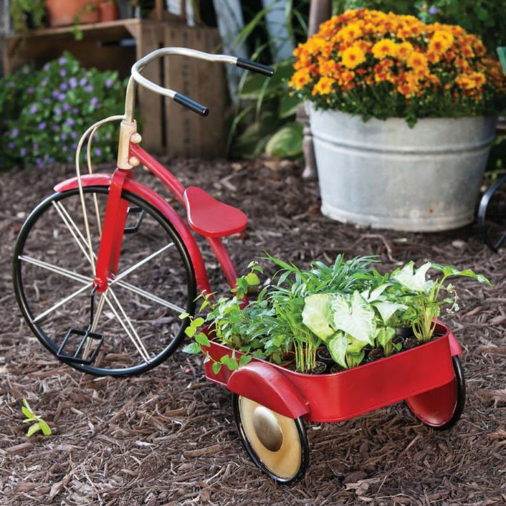 556 Best Images About Planters On Wheels On Pinterest