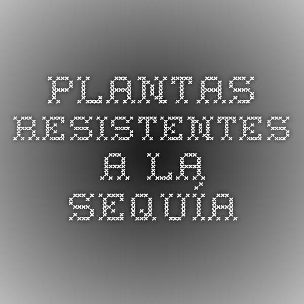 Plantas resistentes a la sequía