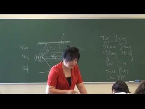 Clase presencial del Graduado en Acupuntura (Escuela Internacional Li Ping) 'Meridianos y acupuntura'. http://www.liping.es