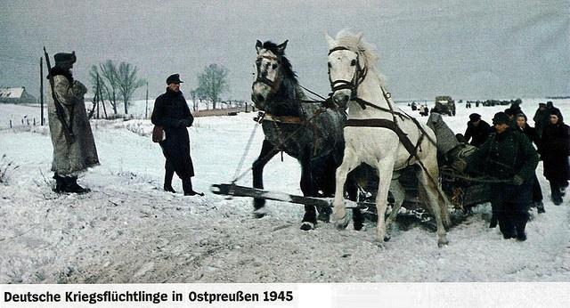 Die Flucht aus Ostpreussen 1945. Die Zeitschrift ''Der Spiegel'' (Nr. 53/28.12.09, Seite 38) hat eine der ganz wenigen Farbaufnahmen vom Fluchtgeschehen 1944/45 abgedruckt.
